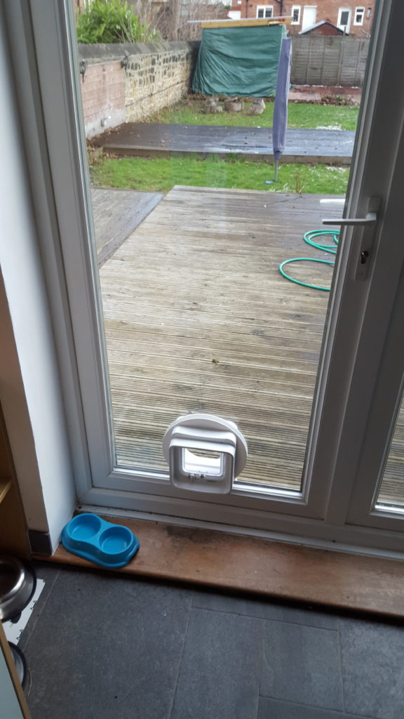 Cat flap door in Wallsend